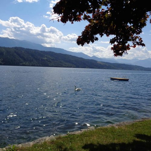 Seezugang für Urlauber in Ferienwohnungen in Millstatt - Kärnten